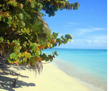 Ongerepte stranden in Bocas del Toro, Panama