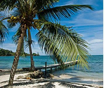 Dolphin Bay, Bocas del Toro